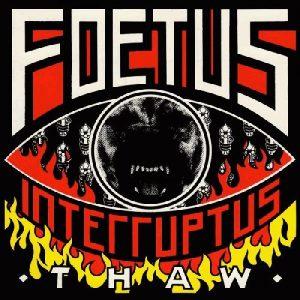 foetus-thaw