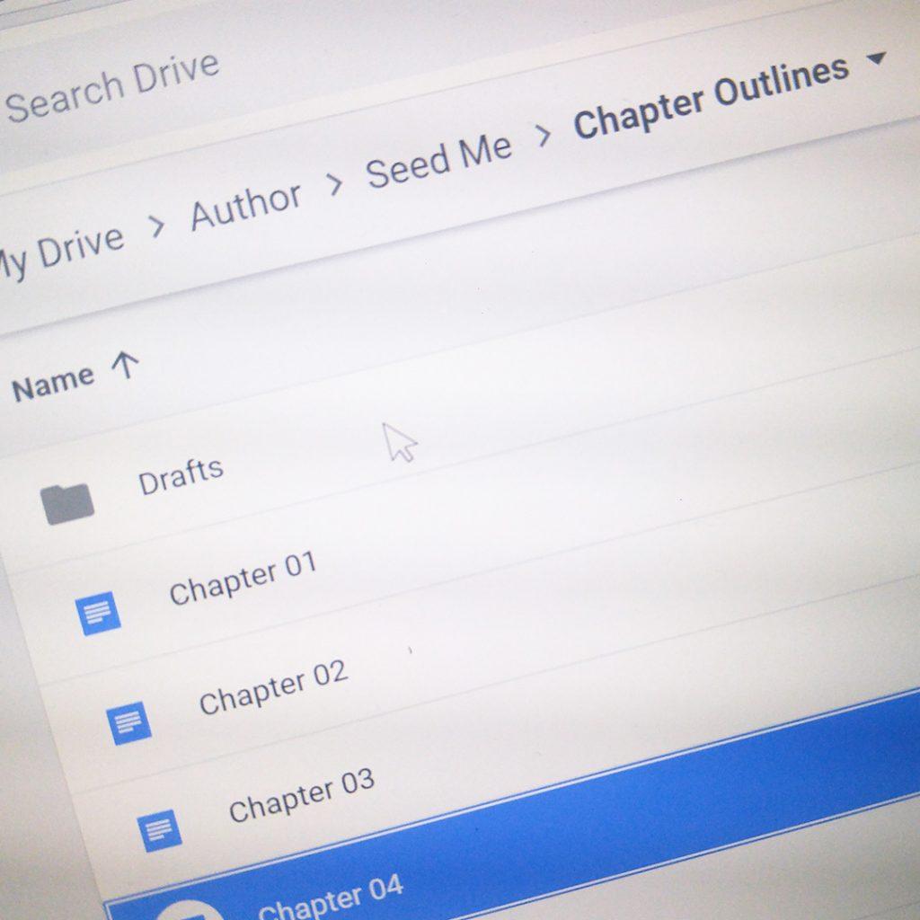 Organizing My Novel