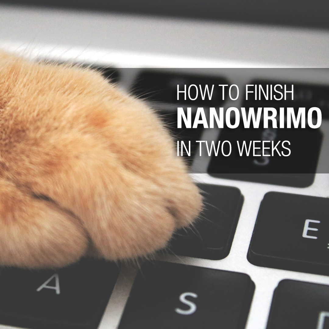 Finish NaNoWriMo in Two Weeks