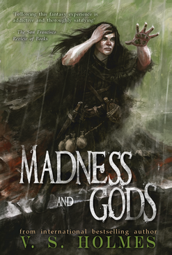 Madness and Gods Reforged Series by V. S. Holmes